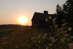 orland barn sunset