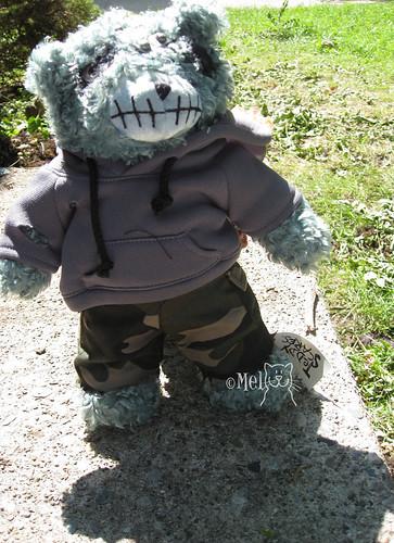 teddy scare1