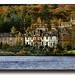 Autumn Colour On Loch Lomond.