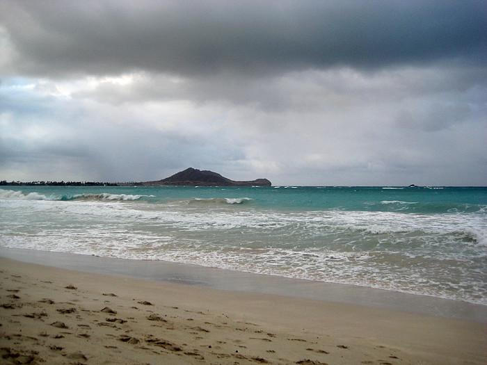 Wandering Oahu 030