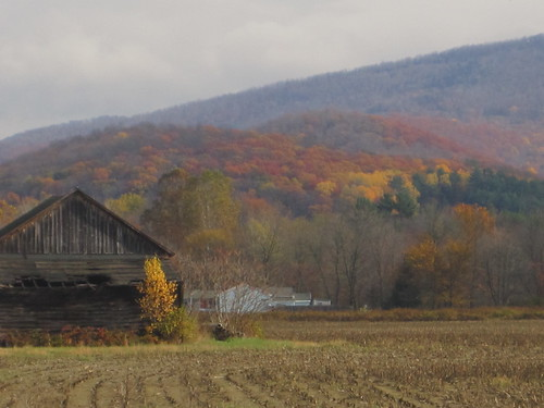 fall in upstate NY