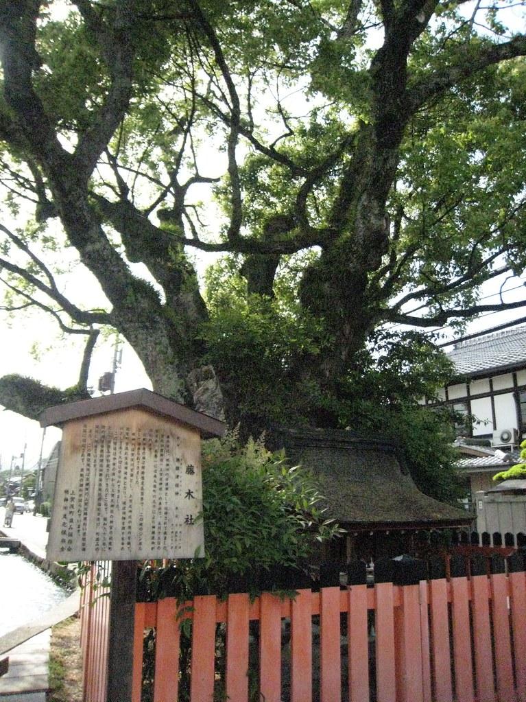 2007.5.27上賀茂・社家の町並通り20