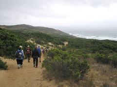 IMG_2966 (kenorrha) Tags: australia greatoceanwalk scenicsnotjustlandscapes