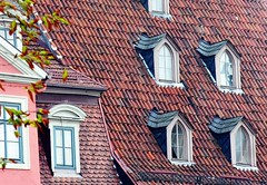 Roofscape (Gerlinde Hofmann) Tags: roof reflection window germany tile bavaria four town coburg fenster franconia explore marketplace dach reflexion dachziegel vier gaupe dormer rooftile gaube explored dachgaupe dachgaube dachschindel reflectiononwindowpane