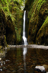IMG_5969 copy.jpg (sweber4507) Tags: oregon river waterfall moss stream columbia gorge oneonta naturesfinest anawesomeshot