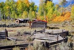 Teton Ghost  Ranch (Bonnie Bowne) Tags: wyoming tetons grandtetonnationalpark
