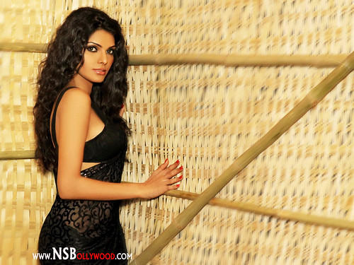 Bollywood Actress Sherlyn chopra latest picture gallery