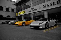 Ferrari's world   R