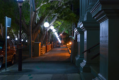 Laman St (Roanish) Tags: street trees tree st newcastle nikon fig australia nsw laman d80