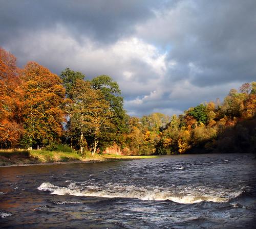 Autumn Trees - Broken Water by billtam.