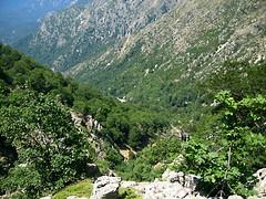 Haute vallée du Cruzini depuis le petit ravin