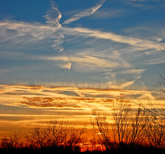 (S Alex Maier) Tags: park sunset sky orange love clouds happy contrail live steve happiness national valley cuyahoga grateful gratitude maier cvnp liveinthemoment skycolor flickrsbest obramaestra