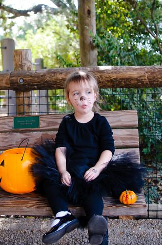 Zoo Boo 2010-231