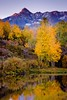 Dallas Divide Reflection (Dan Ballard Photography) Tags: pictures sunset favorite mountain inspiration mountains color reflection fall dan water colors leaves yellow sunrise rockies photography pond colorado gallery photographer fallcolor photos pics outdoor free explore most photographs photograph stunning prints rockymountains portfolio aspen ridgway gallary photograpy forsell dallasdivide alpineglow outdoorphotographer coloradophotographer danballard souttheastcolorado danballardphotogarphy printforsell