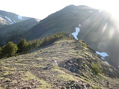 Rowena, sunburst, and summit of Baldy
