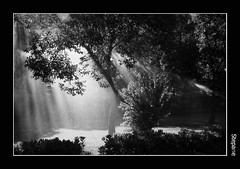 (stefanopa) Tags: life light bw roma nature water rain pb bn eur acqua pioggia luce vita unforgetable the trentparke pictures 50club stepane diamondclassphotographer amazingamateur 20tfblancoynegrosepia