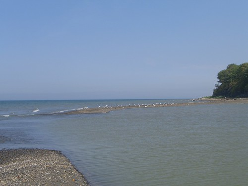 Lake Erie- 18 Mile Creek