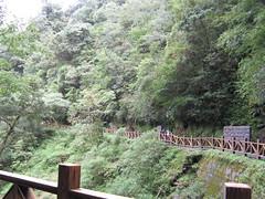 IMG_0124 () Tags: travel bike birdy