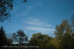 DSC_0018.jpg (JRDesign1) Tags: nikon d70nikon d80glendon forestsunnybrooktoronto