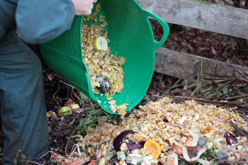 Composting apple pulp