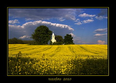 (tozofoto) Tags: trees light sky storm church colors field clouds canon landscape bravo hungary rape mai zala mywinners tozofoto
