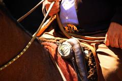 50 (Eduardo Amorim) Tags: horses horse southamerica argentina criollo caballo cheval caballos bravo cavalos pferde poncho cavalli cavallo cavalo gauchos pferd pampa loro pala apero chevaux gaucho  amricadosul loros platera bozal gacho campero amriquedusud provinciadebuenosaires  recado gachos  basto sudamrica sanantoniodeareco suramrica amricadelsur areco sdamerika crioulo caballoscriollos criollos  pilchas pretal pilchasgauchas recao pampaargentina camperos americadelsud redea plateracriolla crioulos cavalocrioulo americameridionale caballocriollo peiteira rdeas campeiros campeiro eduardoamorim cavaloscrioulos rdea fiveflickrfavs bual redeas lomillo iayayam yamaiay pampaargentino