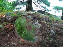 P1030440.jpg (airwaves1) Tags: 1000islands stlawrenceriver july282007 yeoisland