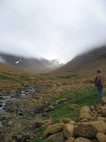 Newfoundland 046