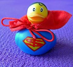 super duck (kliffklegg) Tags: ireland irish galway eire connemara clifden cleggan kliffklegg
