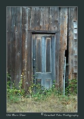 The Old Barn Door (Greatest Paka Photography) Tags: sanfrancisco california door texture abandoned barn pattern decay sanfranciscobayarea discolor sangregorio peninsula southbay westcoast halfmoonbay pacificcoast oldbarn sanmateocounty olddoor sanmateocoast oldbarndoor sangregoriohouse