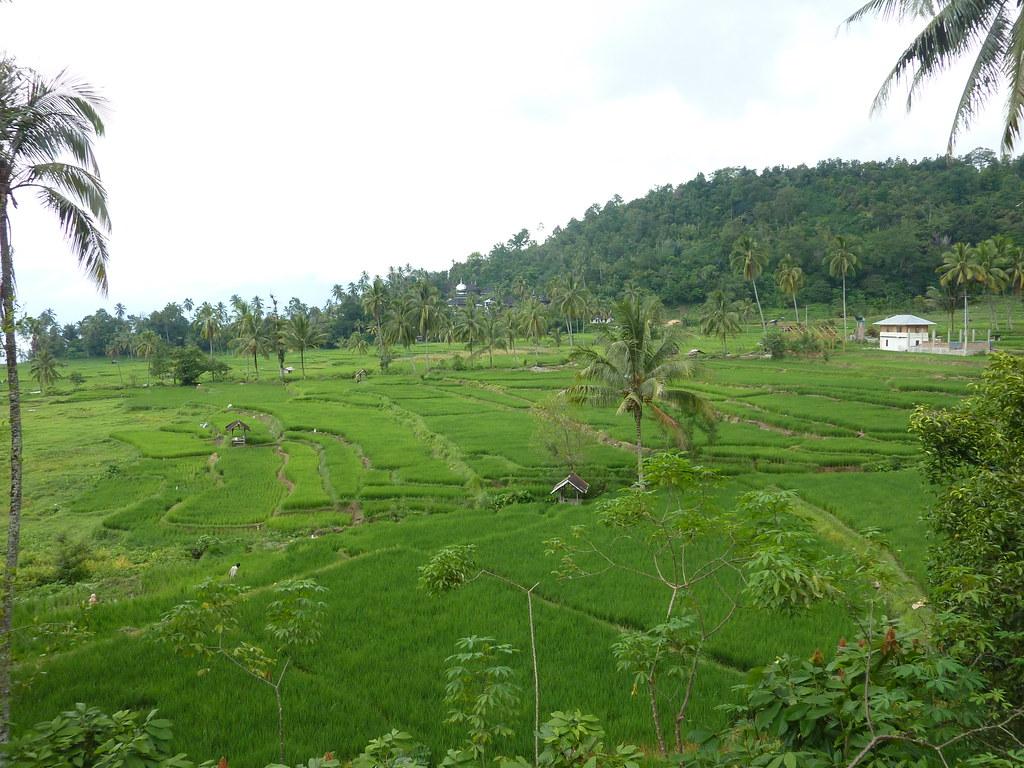 Sumatra-Lac Maninjau (155)