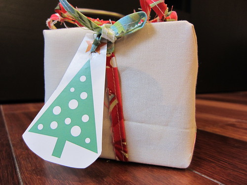 Go-Green Fabric Gift Wrap