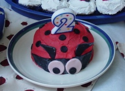 Alexis Birthday #2 Lady Bug Cake