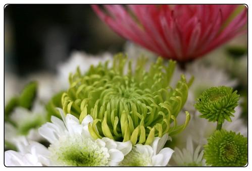 luncheon flowers