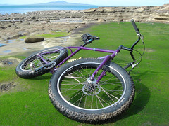 Rothesay Bay Slime (ibikenz) Tags: newzealand beach bike bicycle auckland singlespeed algae pugsley surly rothesaybay