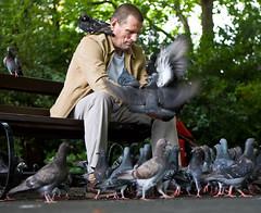 Birdman of the Green (C) 2007