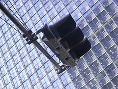 japan tokyo crossing 東京 signal 丸ビル 信号機 quma