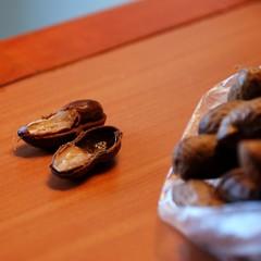 Curaçao - Boiled Peanuts texture
