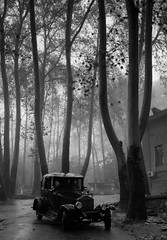(Beshef) Tags: old bw car rain palace tehran saadabad
