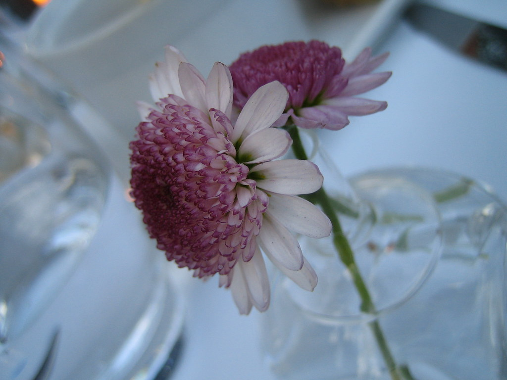 Fresh Flowers (in our napkin rings)
