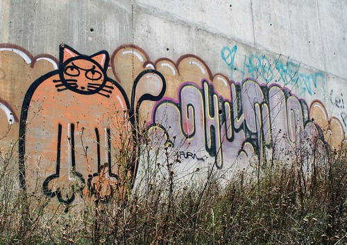 Cat Graffiti in Almada