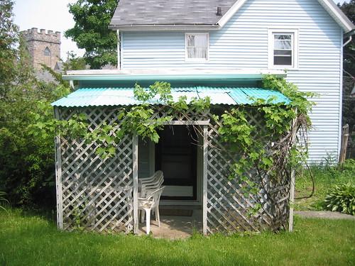 Back shed 1