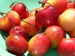 Rainier Cherries ~ The Cream Of The Crop (jellybeanjill13) Tags: summer fruit cherry refreshing fridayfoodfiesta rainiercherries rainiercherry