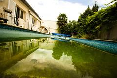 Dirty pool - by Éole