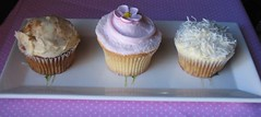Cupcakes_2405