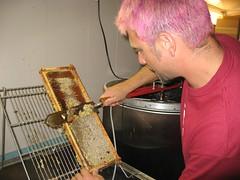 Beekeeping 2641