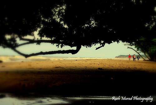 Bungai Beach, Miri. Malaysia