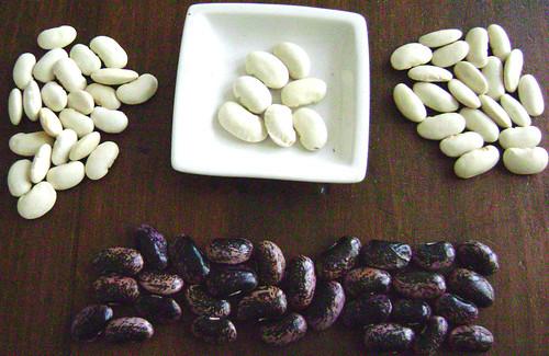 runner_beans1