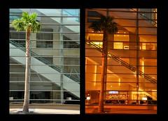 Day and Night (AlexJ (aalj26)) Tags: usa tree vidro arquitetura night hotel us nikon day sandiego dia jorge eua e contraste noite janela escada alexander fachada rvore omni estadosunidos transparente montagem estrutura d90 alexj aalj26 alexanderaljorge