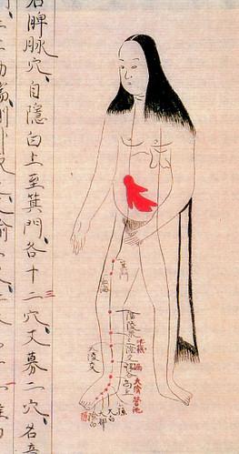 Japón: Libros Anatomía 1603-1868 - Imágenes - Taringa!